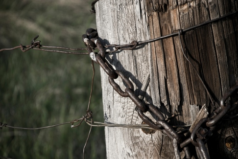 chain around old fence pole