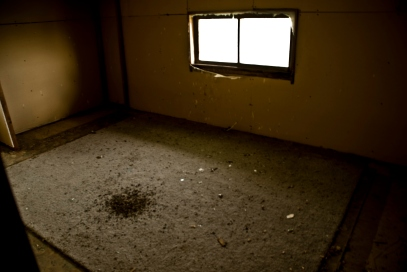 empty room filled with animal crap on the floor