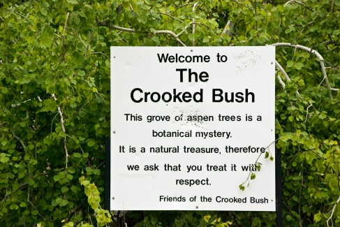 welcome to the crooked bush sign