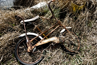 rusted kids bike in tall brown grass