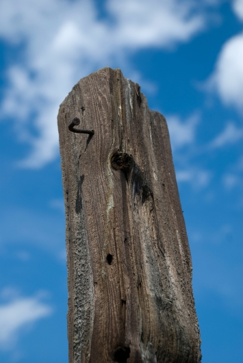 wooden fence post with bent nail