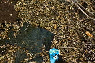 old book in pile of leaves - still more playboy's party jokes