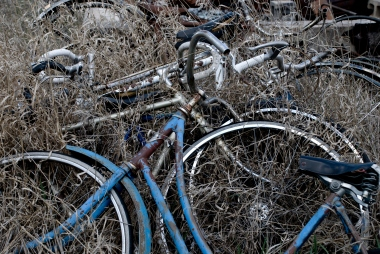 old rusted blue bicycle among weeds