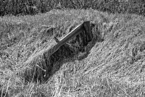old fence post sticking up through long dry grass