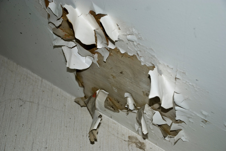paint peeling from ceiling