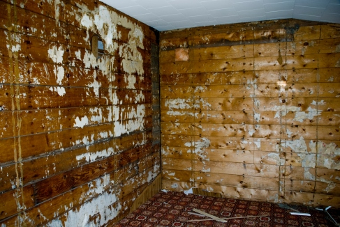 wood walls in an abandoned house