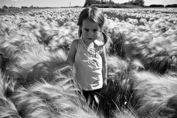 child in field of foxtails