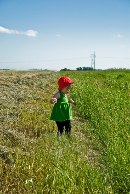 child in red hat in green field