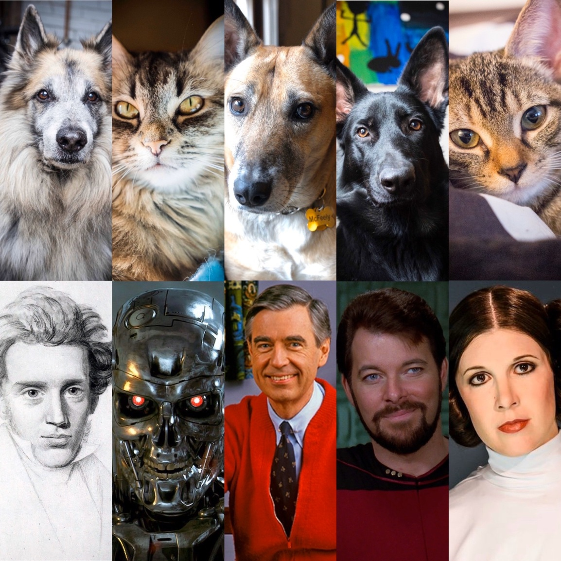 Pets and their Namesakes
